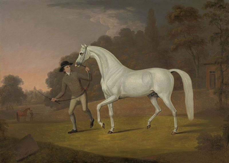 Thomas Stringer - James Hugh Smith-Barry's (1748-1801) grey stallion being led by a groom in the park at Marbury